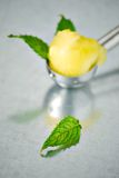 Scoop of sorbet and mint. A scoop of yellow sorbet with mint leaves Royalty Free Stock Photography