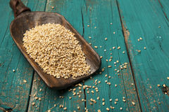 Scoop of steel cut oats Royalty Free Stock Images