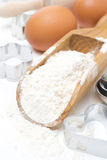 Scoop with wheat flour, rolling pin, eggs and cookie cutters Royalty Free Stock Photography