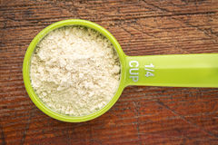 Scoop of whey protein powder Royalty Free Stock Images