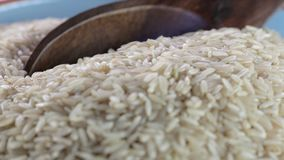 Scooping Brown Rice from Bowl stock video footage