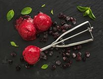 Scoops of berry sorbet or ice-cream with frozen black-currant. Mint and metal scooper on black slate tray over dark grunge backdrop, top view stock photos
