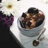 Scoops de crème glacée de chocolat avec des biscuits dans une cuvette blanche Image libre de droits