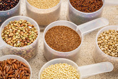 Scoops of gluten free grains. Gluten free grains (quinoa, brown rice, kaniwa, amaranth, sorghum, millet, buckwheat, teff) - measuring scoops on a rustic barn Stock Photos