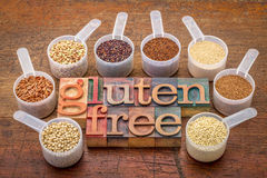 Scoops gluten free grains  and text in wood type. Gluten free grains (quinoa, brown rice, kaniwa, amaranth, sorghum, millet, buckwheat, teff) - measuring scoops Royalty Free Stock Photos