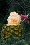 Ice Cream Inside Pineapple royalty free stock photos