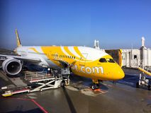 The Scoot air aircraft parking at dock Royalty Free Stock Photography