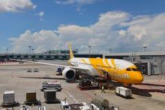 Scoot nya Boeing 787-9 Dreamliner på den Changi flygplatsen Arkivfoto