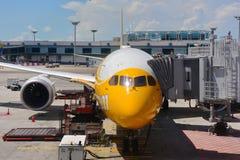 Scoot nya Boeing 787-9 Dreamliner på den Changi flygplatsen Arkivbilder