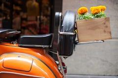 Scooter orange avec les soucis oranges dans la boîte en bois Photographie stock libre de droits