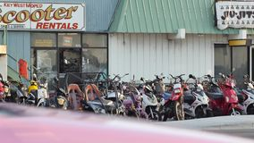 Scooter rentals Key West Florida stock video