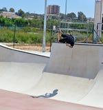 Scooter Stunt In Skatepark Stock Image