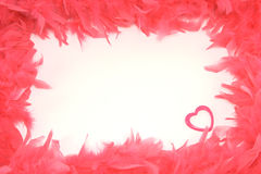 Scope from red feathers with a heart inwardly isol. Scope from red feathers with a heart inwardly on the white background royalty free stock photos