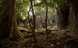 Scoperta di Preah Khan Fotografia Stock Libera da Diritti