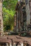 Scoperto nel mezzo della giungla cambogiana il complesso di Angkor immagine stock libera da diritti