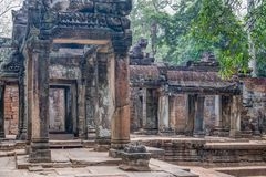Scoperto nel mezzo della giungla cambogiana il complesso di Angkor fotografie stock libere da diritti