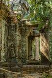 Scoperto nel mezzo della giungla cambogiana il complesso di Angkor immagini stock libere da diritti