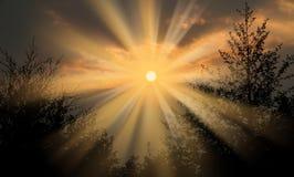 Scoppio dei raggi del sole Fotografia Stock