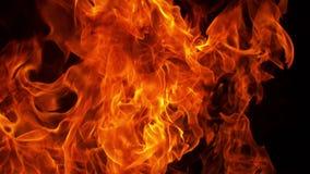 Scoppio di fuoco sul nero video d archivio