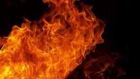 Scoppio di fuoco sul nero stock footage