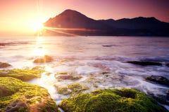 Scoppio di Sun con il muschio della sorgente fotografia stock