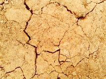 Scorched earth background texture. photo.  Stock Photo