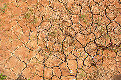 Scorched earth. Scorched earth during drought Stock Image