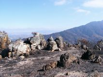 Scorched earth Stock Photography