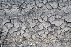 Scorched earth. Texture or background Royalty Free Stock Photo
