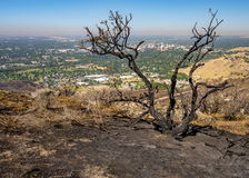 Scorched ground from a fire and city of Boise Idaho stock images