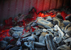 Scorched particles of trees. In the grill in the nature Stock Photos