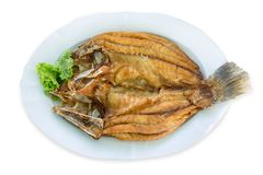 Scorched Snapper topped on white plate, die cut in white background. Fried snapper fish ,top view in white isolated stock images