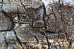 The scorched wooden background. Old burnt wooden board Stock Photography
