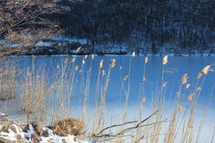 Scorci di Lago, Italy. Royalty Free Stock Image