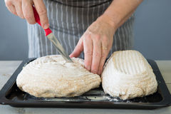Scoring bread dough Royalty Free Stock Images