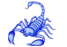 Scorpio Royalty Free Stock Photos