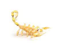 Scorpio. A yellow Scorpio from glass royalty free stock photography
