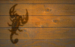 Scorpio Стоковые Изображения RF