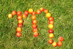 Scorpio. October 21-November 23,zodiac sign made of plums on grass,see series Royalty Free Stock Photos