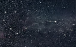 Scorpio Constellation. Zodiac Sign Scorpio constellation lines royalty free illustration
