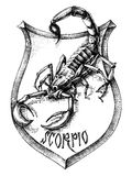 Scorpio drawing. Scorpion heraldry scorpio zodiacal sign Stock Image