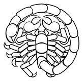 Scorpio Scorpion Astrology Horoscope Zodiac Sign royalty free illustration