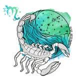 Scorpio zodiac sign.Horoscope circle.Watercolor Stock Photography