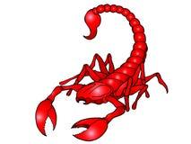 Scorpion Stock Photography