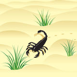 Scorpion. Photo libre de droits