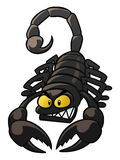scorpion Foto de Stock