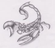 scorpion Fotografering för Bildbyråer
