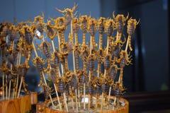 Scorpion du marché de nuit Image stock