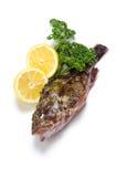 Scorpion fish Stock Images