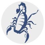 Scorpion,  icon Royalty Free Stock Photo